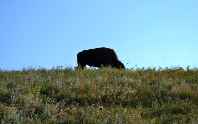 Photo Reel South Dakota