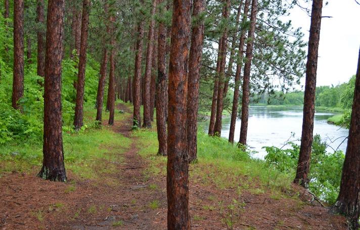 Minnesota Trail 2