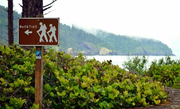 Best-Campground-Oregon-Coast-Cape-Lookout-State-Park