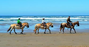 best-campgrounds-oregon-coast-nehalem-bay-state-park