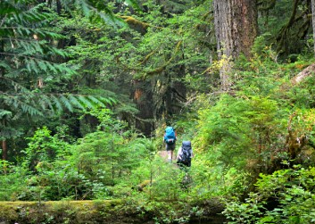 best-hiking-trails-olympic-national-park-washington-hoh-river-trail