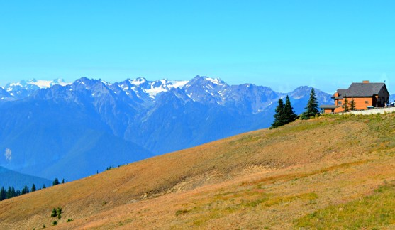 best-hiking-trails-olympic-national-park-washington-hurricane-ridge-hurricane-hill