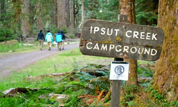 top-rated-campgrounds-mount-rainier-national-park-ipsut-creek-campground