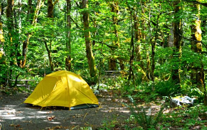 washington-north-cascades-national-park-top-rated-campgrounds-north-cascades-national-park-mineral-park-campground
